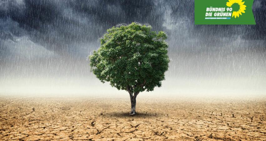 Grüne Politik für Klimaschutz im Ennepe-Ruhr-Kreis